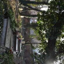 Stary Cmentarz Żydowski Katowice