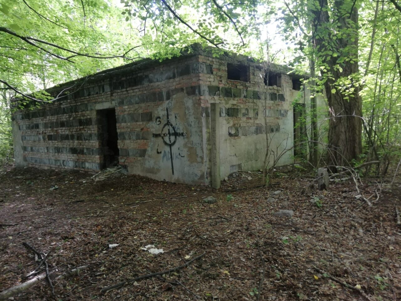 "Ruiny basenu ""Liga"" Chorzów"