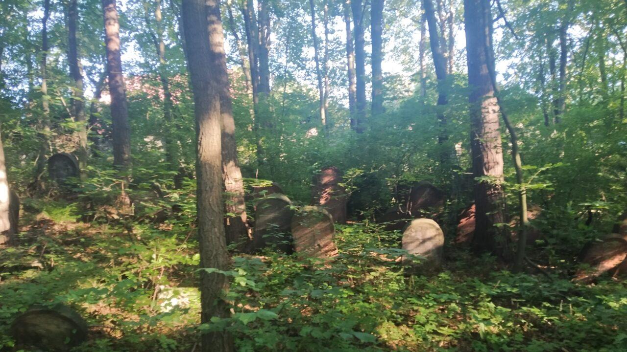 Cmentarz Żydowski Kidów