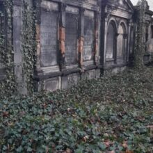 Opuszczony Stary cmentarz żydowski w Gliwicach Gliwice