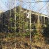 Opuszczone hale Kuczków