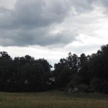 R116b i Sonderwerk Nieborowice